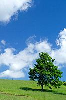 Sky on a grassy hill, Towada, Aomori Prefecture, Japan