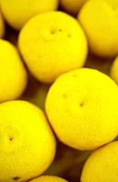 Yuzu fruits, close up, full frame