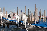 Gondolas on San Marco´s waterfront in Venice, Venice Port, Venetian Lagoon, Italy, Europe