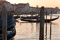 gondolas moored beside Piazza San Marco at sunset, Venice, Italy, Europe