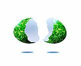 Broken Egg with Foliate Pattern