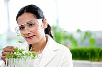 Female scientist examining seedlings in laboratory