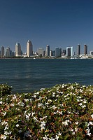 DOWNTOWN HARBOR SIDE CITY SKYLINE FROM CENTENNIAL PARK SAN DIEGO CALIFORNIA USA