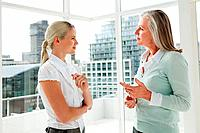 Two businesswomen talking in office