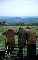The farming community in counties such as West Yorkshire keep livestock,and use trained collie dogs to herd sheep. There are Sheepdog trials held annu...