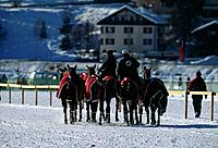 Cartier Polo World Cup 1998. Frozen lake. Snow. Horses in red blankets. Being led away by two riders.