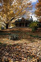 Traditional style house. Pitched roof. Pumpkins on verandah. Chimney. Trees. Autumn foliage.