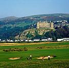 View from Royal St David´s Golf Club of Harlech castle. Town. Hills. Golf players.