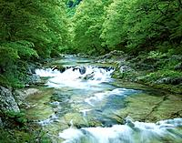 Ojika river, Tochigi Prefecture, Honshu, Japan