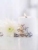 Candle, aster flower and lavender