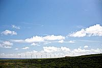 Ten modern windmills collect energy on the southern coast of Aruba.