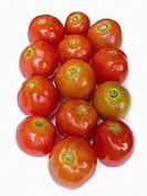 Tomato, Lycopersicon esculentum