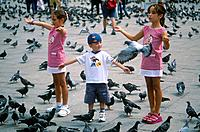 Piazza San Marco. Square. Children feeding pigeons.