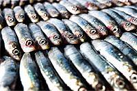 Sardines, anchovies,