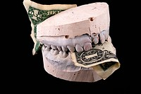 Jaws hold banknote