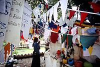 The Pattini Devale Buddhist shrine with prayer flags and banners around the altar. Situated to the west of Natha Devale across the Eth Veediya Elephan...