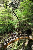 The Takachiho Gorge spans the Gokase_gawa River and is a popular place for people to walk.