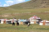The landscape of the northern regions of Mongolia is protected by a series of National Park areas,and the population who live there are primarily herd...
