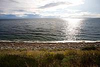 shoreline along strait of juan de fuca, victoria, vancouver island, british columbia, canada