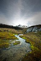 a small stream with a mountain in the background, jasper alberta canada