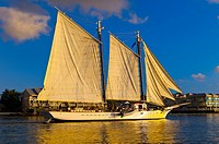 Schooner Western Union sailing by Mallory Square, Key West, Florida Keys, Florida USA