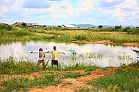 Two Boys On The Edge Of A Pond With Arms Outstretched, Kampala Uganda Africa