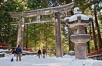 Tori and lantern at the entrance of Tosho-gu Shrine , Nikko,Japan