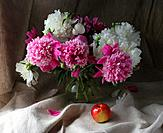 Flowers and apple