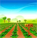 vegetable farm, outdoors, weekend farm, path, scenic, farm