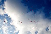 Germany, Red heart shape balloons with messages in sky