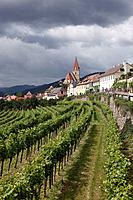 Austria, Lower Austria, Wachau, Weissenkirchen in der Wachau, View of town with vineyard in foreground