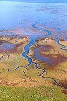 Aerial of tidal inlet in mudflats, Wadden Sea, Lower Saxony, Germany