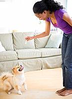 Mixed race woman playing with Pomeranian dog