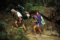 Hikers with child on Abel Tasman Coast Track, Abel Tasman National Park, New Zealand, Oceania