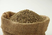Spices , bishop weed ajowan ajwain trachysrermum ammi carum ajowan carum copticum in jute sack against white background