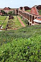 The interior of Fort Jefferson shows ruins among the vegetation.