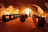 Narodny salon vin - the historic wine cellar in Pezinok, where the best 100 slovak wines of each year are displayed, Slovakia