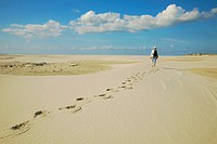 man walking through the dunes, Germany, Schleswig_Holstein, Amrum
