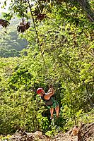Zip line, rain forest, Bahoruco, Barahona, Dominican Republic, Caribbean, forest, rope, adventure