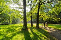 Berlin  Germany  Family walking in the Tiergrten park
