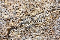Texture of nature stone background