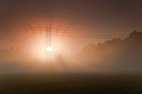 power pole in morning mist in autumn, Germany, Saxony, Vogtlaendische Schweiz