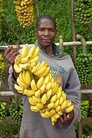 man offering bananas, Burundi, Bujumbura Rural, Bugarama