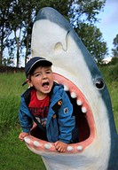 great white shark Carcharodon carcharias, Carcharodon rondeletii, little boy in the throat of a white shark