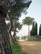 Tuscany countryside.