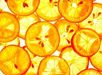 Lemon and Orange Slices
