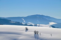 winter landscape in the Black Forest, Germany, Baden_Wuerttemberg, Black Forest