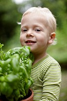 Toddler boy carrying potted plant