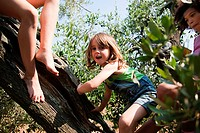 Girls climbing tree