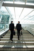 Businessmen going up steps